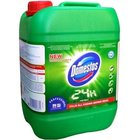 Domestos WC Pine Fresh 5lt